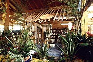 bambus zimmer bambustrnds. Black Bedroom Furniture Sets. Home Design Ideas
