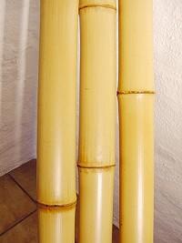 Bambusrohre dekorieren bauen und gestalten mit bambusrohren und bambusstangen - Bambusrohre deko ...
